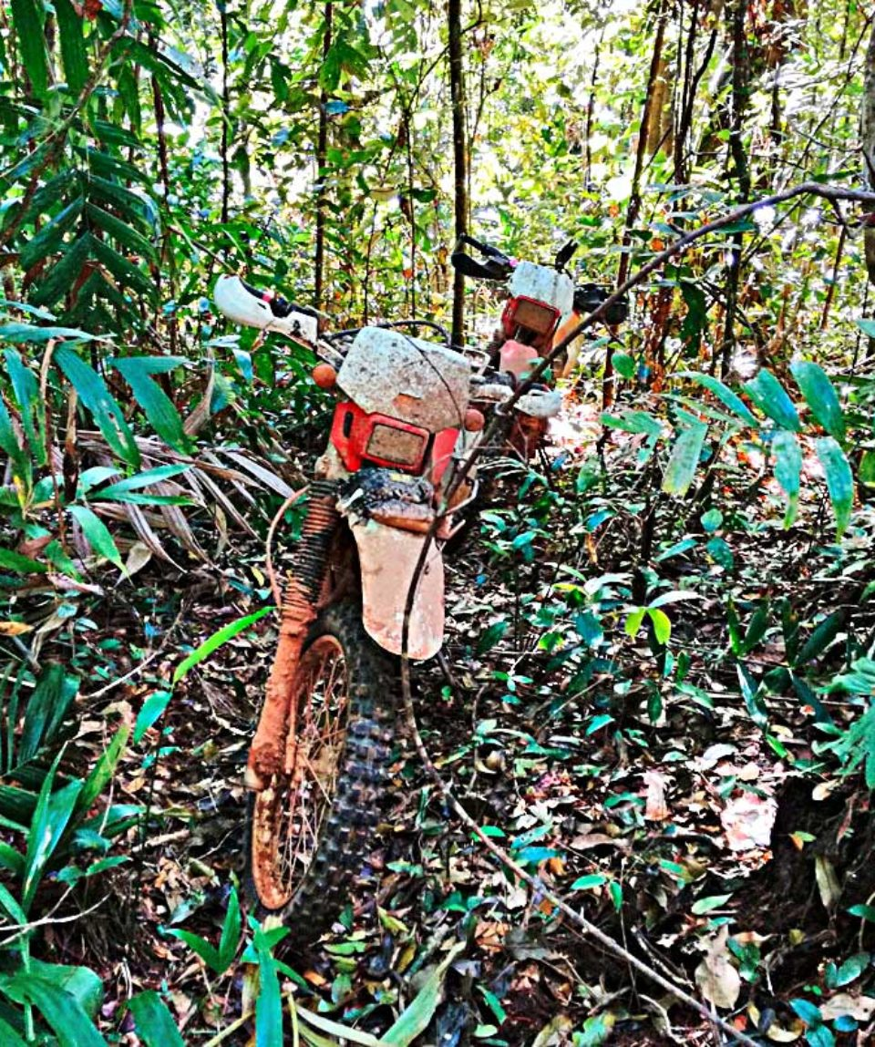 CAMBODIA-EXPEDITIONS-JUNGLE